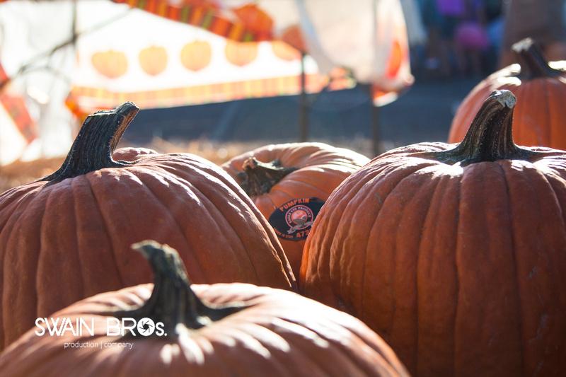 Market Days - Oktoberfest